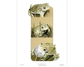 Toad, Natterjack, Amphibian, Pond, Art, Print, Wildlife, Animal, Watercolor, Limited Edition, Giclee, Archival, 11x14