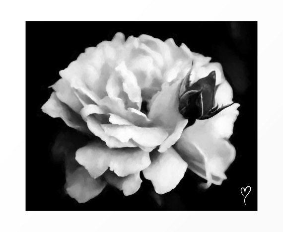 "Black and White Art, Rose in Black and White, Flower Art, Fine Art Print, Rose, Modern Home Decor, Black and White Print ""Peek a Boo"""