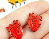 jazzy hearts for your ears // anatomical heart stud earrings