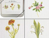 In Full Bloom Notecards CD Tin -- Spring Fashion Flowers