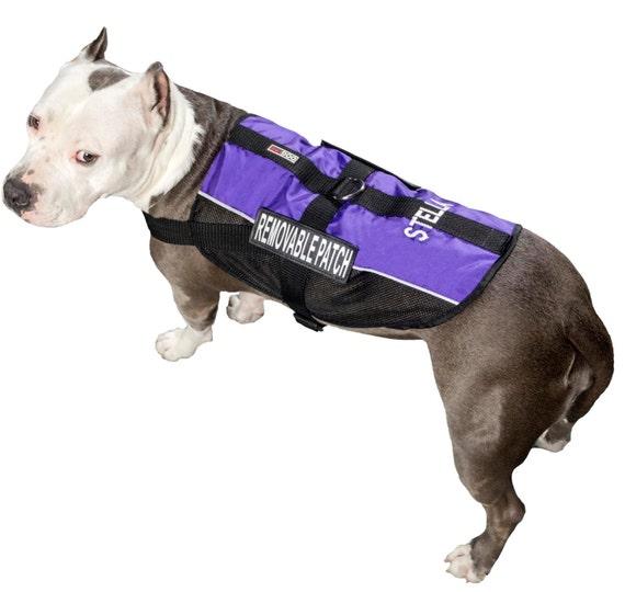 Personalized Service Dog Vest