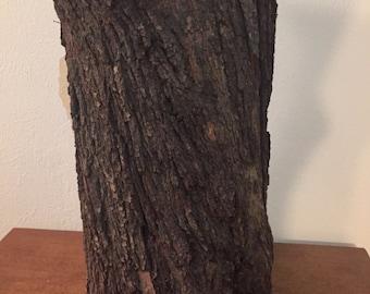 Almond Wood Stump