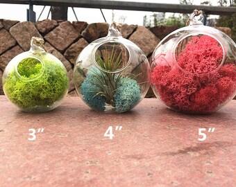 "Small oblique opening round glass hanging terrarium,empty 3""/4""/5"" indoor planter container,ai plant holders,succulent garden decor"
