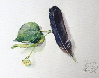 Feather  and lime, ORIGINAL watercolor still life