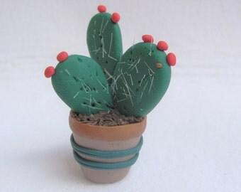 Succulent, prickly pear, favor ornament