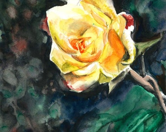 Yellow rose. Print of floral watercolor painting. Home decor or greeting card