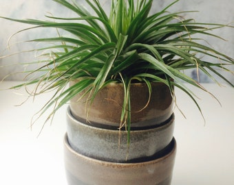 Coffee Can Planter Etsy