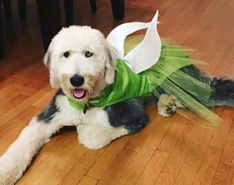 Fairy dog costume, Tinkerbell dog costume