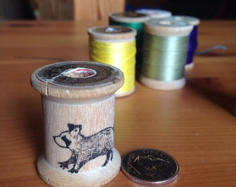 Raccoon thread spool