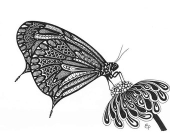 A4 print of original hand-drawn butterfly