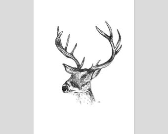 Deer Black and White Illustration Art Print