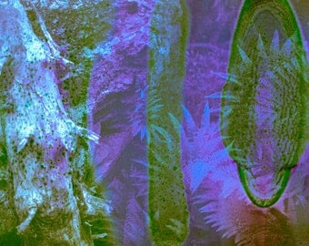 Psychedelic Landscape - Tree