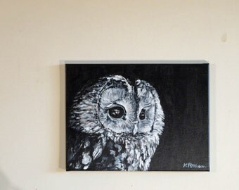 Black and White Owl 2