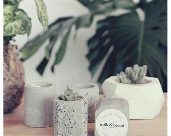 Mini Concrete Cement Pot - Speckled Square