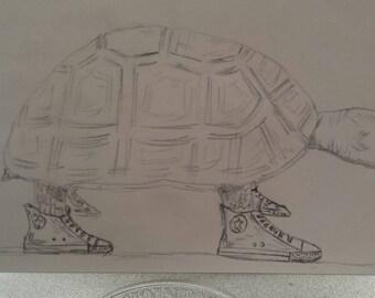 Turtle wearing sneakers