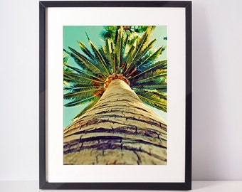 Tropical Palm Tree Wall Art, Plant Print, Palm Photo, Colour Photography, Large Poster, Blue and Green, Modern Minimal, Digital Download