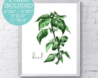 Basil, Herbs, Herb Prints, Watercolor Herbs, Kitchen Signs, Kitchen Decor, Kitchen Printables, Kitchen Prints, Kitchen Art, Kitchen Herb