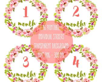 "Baby stickers pack - All 12 Months of the first year + ""Newborn"" and additional the first 3 weeks Clip Art Watercolor Roses Instat Download"