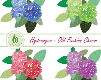 Flower Clipart, Hydrangea, Blue Pink Purple Green Bouquets Digital Floral Borders