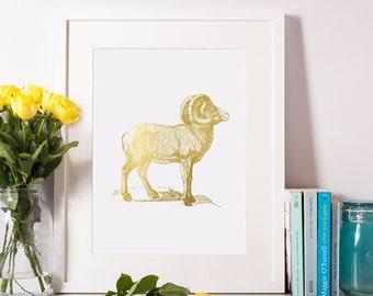 Ram Print, Gold Foil, Ram Art, Animal Print, Home Decor 8x10-A4