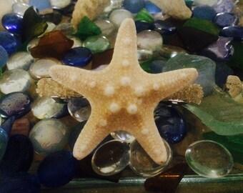 Starfish Sea Star Hair Clip Barrette