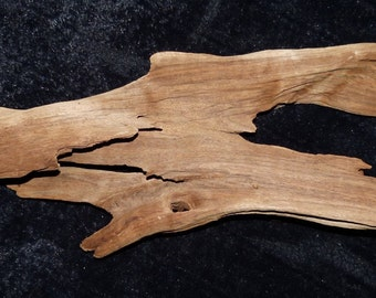 Large Table top Driftwood decor