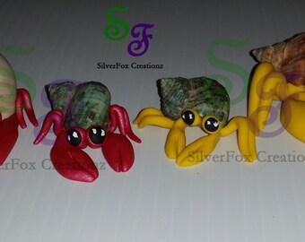 Hermit Crab Family