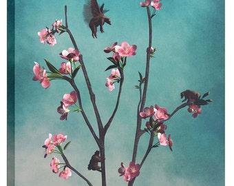 "Giclee Canvas Wall Art ""Hummingbears"" by Cynthia Decker"