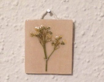 Pressed Baby's Breath on Wood 2