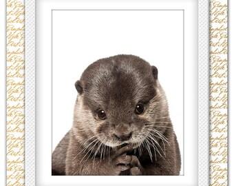 Otter Print, Otter art, Otter poster, Animal Print, Animal Art, Otter Nursery Print, Otter Wall Decor, Animal printable art, Animals Decor