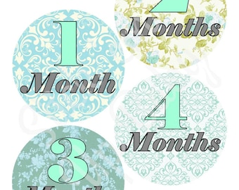 Monthly Baby Stickers - Baby Age Stickers - Girl - Flowers - Vintage - Milestone Stickers - Baby Photo Prop