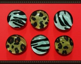 Animal Print Glass Gem Magnets set of 6