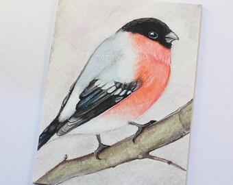 Original ACEO Card, Eurasian Bullfinch, Bird Drawing, Watercolor Painting, Hand Drawn ATC, Pyrrhula pyrrhula, Nature Art, Wildlife ACEO