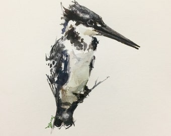 "Kingfisher #1, 6""x6"""