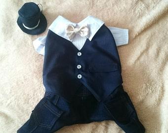 suit for celebration костюм для торжества