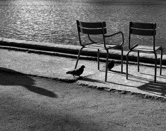 Paris, street photography, France, street art, wall art, fine art print, river, cityscape, birds, chairs, sunshine, photographic print