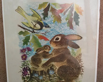 Vintage 1950s Bunny Print Rabbit Penn Prints 2012124