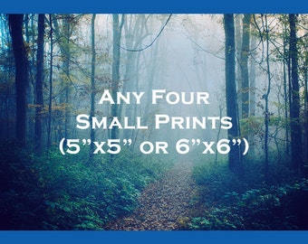 Discounted Print Set - Save 50% on Four 5x5 or 6x6 Prints - Perfect for Apartment or Cozy Room - Four Photos - Colorful Photography