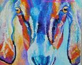"""Original Oil Painting Nubian Goat Portrait 10""""x10"""" NOT A PRINT"""