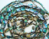 Free Ship Destash - 8 Strand Lot - Abalone Beads Natural Gemstones Paua