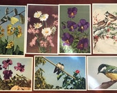 7 Gorgeous Vintage Postcards of Flowers and Birds - Blank on Back - Use for Wedding Guest Book Projects
