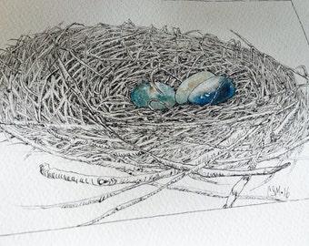 Watercolor Birds Nest Robin Eggs Original