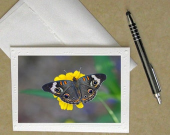 Butterfly greeting card, butterfly stationary, butterfly card, butterfly notecard, butterfly card, butterfly photo card, butterfly birthday