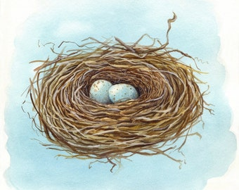 Love Nest No.1 - signed print of original watercolor painting of a bird's nest