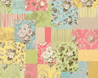 """SALE 40% Off SQ35 Robyn Pandolph JARDIN GRIS Precut 5"""" Charm Pack Fabric Quilting Cotton Squares"""