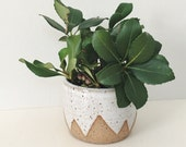 White Mountain Planter - small speckled planter white ceramic plant pot triangle zigzag geometric design, stoneware flower pot