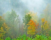 Blue Ridge Parkway Nature Photography Foggy Morning Dreamy Wall And Office Decor Autumn Trees Landscape Photo Fine Art Print Gold And Green