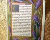 Original Vintage Book Plate Print, Beautiful Gold Printing, Medieval Botanical, Illustration, Latin Text, Botanical Print, Medieval Art