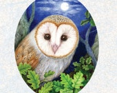 Barn Owl Greeting Card by Valerie Greeley