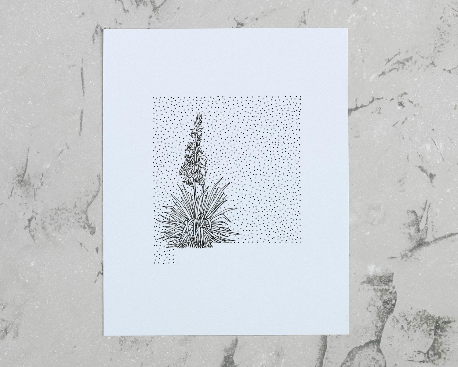 New Mexico Yucca State Flower Drawing Giclee Print by annatovar
